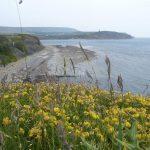 Charnel Bay