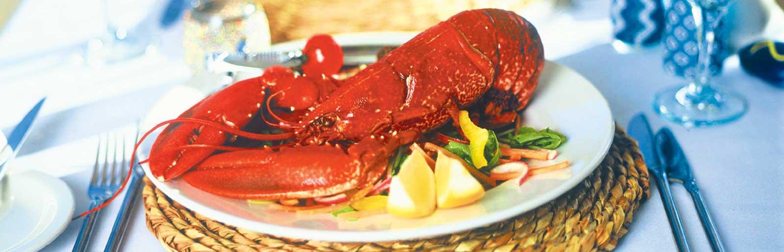 Lulworth Lobster